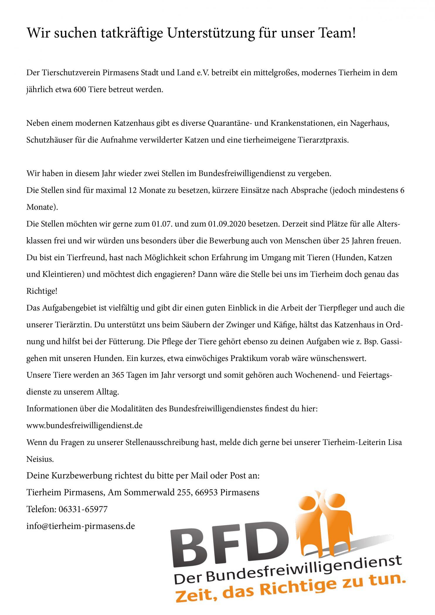 Bundesfreiwilligendienst Tierheim Pirmasens